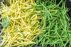 Зеленые и желтые щелчковые фасоли Стоковые Изображения RF