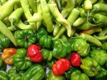 Зеленые и красные Chiles Стоковое фото RF