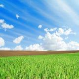 Зеленые и черные поля и белые облака в голубом небе Стоковая Фотография RF