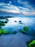 Зеленые камни в Тель-Авив Стоковое фото RF