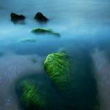 Зеленые камни в Тель-Авив Стоковые Фотографии RF