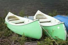 Зеленые каное Стоковые Изображения RF