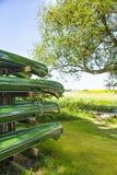 Зеленые каное Стоковые Изображения