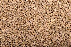Зеленые кофейные зерна закрывают вверх Стоковое фото RF