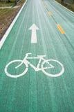 Зеленые майны велосипеда Стоковое фото RF