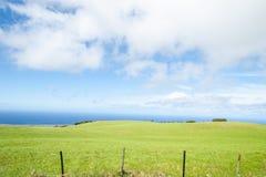 Зеленые обрабатываемые земли встречают море Стоковое фото RF