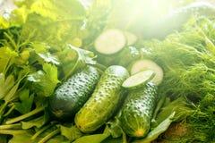 Зеленые овощи, заводы и травы стоковое фото rf