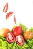 Зеленые овощи и томаты Стоковое фото RF