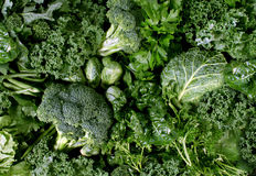 Зеленые овощи Стоковая Фотография RF
