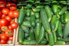 Зеленые огурцы и красные томаты Стоковое фото RF