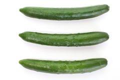 Зеленые огурцы стоковые изображения rf