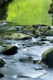 Зеленые отражения на неподвижной воде реки Blackledge, Connec Стоковые Фото