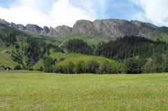 Зеленые поле и утесы Стоковое Изображение RF