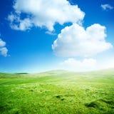 Зеленые поля завальцовки стоковые изображения rf