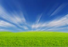 Зеленые поля с голубым небом Стоковое фото RF