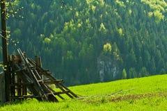 Зеленые поля Стоковое Изображение