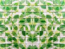 Зеленые плитки мозаики лист стоковое фото