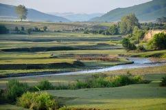 Зеленые равнины в восходе солнца Стоковые Фото