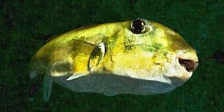 Зеленые рыбы жабы Фото имитации картины маслом Стоковые Изображения