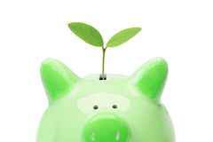 Зеленые сбережения Стоковая Фотография RF