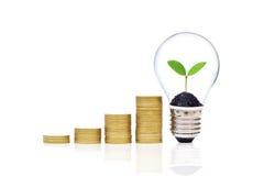 Зеленые сбережения Стоковые Фотографии RF