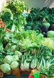 Зеленые свежие овощи Стоковые Изображения RF