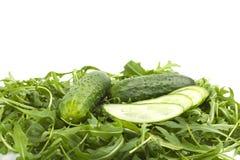Зеленые свежие огурцы Стоковые Изображения