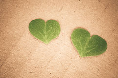 зеленые сердца Стоковые Изображения