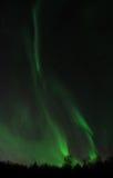 Зеленые смещения рассвета через ночное небо Стоковые Изображения