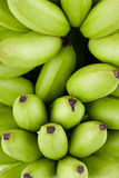 Зеленые сырцовые золотые бананы на изолированной еде плодоовощ банана Mas Pisang белой предпосылки здоровой Стоковые Изображения RF