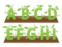 Зеленые тематические алфавиты от a к I Стоковая Фотография RF