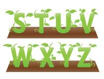 Зеленые тематические алфавиты от s к z Стоковое Изображение RF