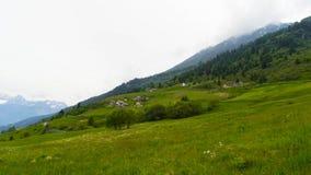 Зеленые луга и горы в швейцарской долине стоковая фотография