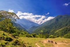 Зеленые холмы и голубое небо Стоковое Изображение RF