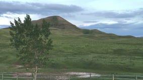 Зеленые холмы и красивое небо акции видеоматериалы