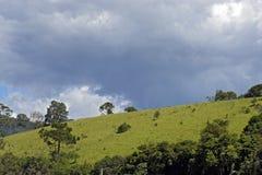 Зеленые холмы на сумраке стоковая фотография rf