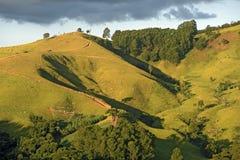Зеленые холмы на сумраке стоковые фото
