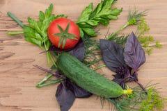 Зеленые цвета овощей для варить салат Стоковая Фотография RF