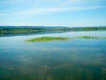 Зеленые цвета озера Стоковые Фото