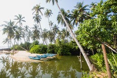 Зеленые шлюпки ` s ладоней и рыболовов на пустом пляже в Tangalle, Шри-Ланке Стоковое Изображение