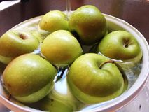 Зеленые яблоки Стоковая Фотография