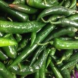 Зеленые Chilies Стоковое Изображение