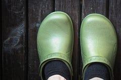 Зеленые crocs закупоривают worn человеком в черных носках Стоковое фото RF