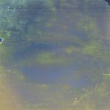 Зеленые grungy пятна на голубой винтажной предпосылке Стоковая Фотография RF