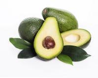Зеленый авокадо Стоковые Фото