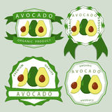 Зеленый авокадо Стоковое Изображение