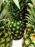 Зеленый ананас Стоковое Изображение
