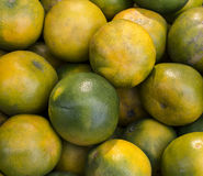 Зеленый апельсин Стоковые Изображения