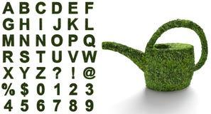 Зеленый алфавит с структурой листьев Стоковое Изображение