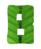 Зеленый алфавит текстуры лист Стоковая Фотография